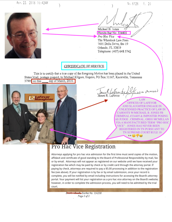 JUDGE GREGORY MCMILLAN EXPOSED 4TH CIRCUIT COURRT KNOX COUNTY TENNESSEE SCAM 134338